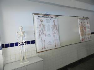 laboratório-de-ciências-2